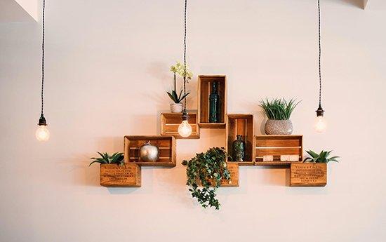 5. Koop plantjes met een lang leven